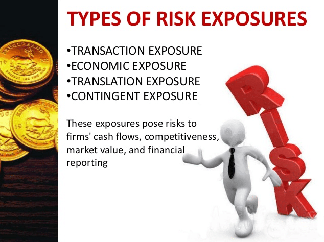 types of risk exposure