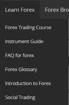 FXLeaders educational programs