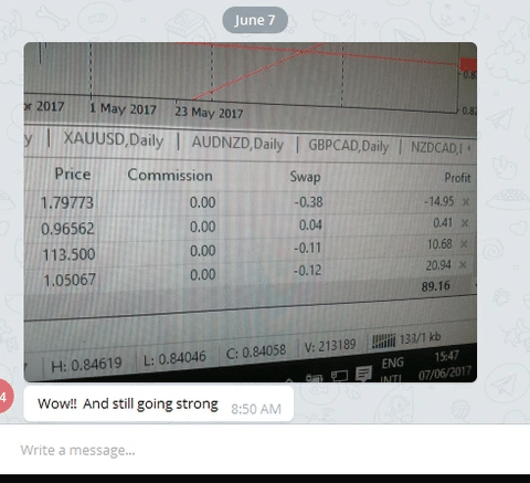 Pipphenes trading results