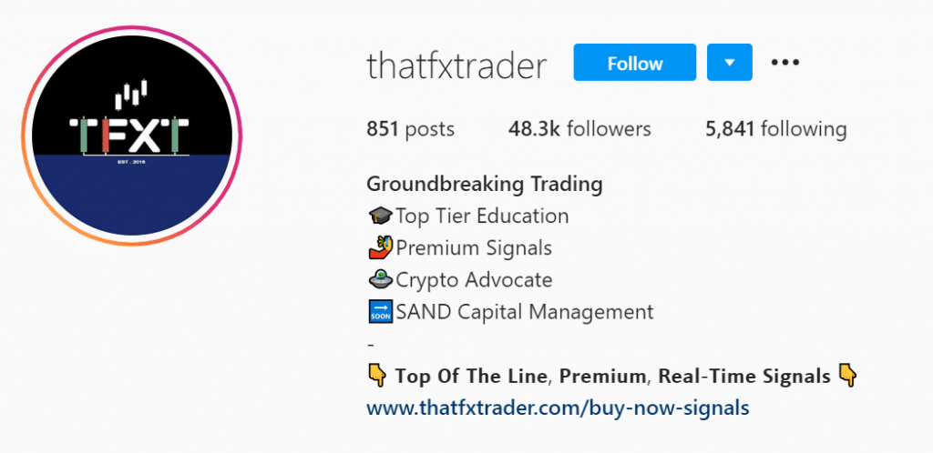 ThatFXTrader Social networks profiles