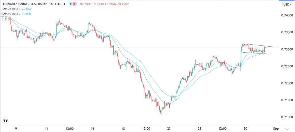 The AUDUSD hourly price chart